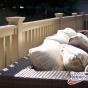 adobe-railing-4